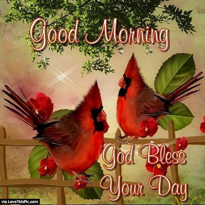 Good Morning God Bless You Pictures Photos And Images For Facebook
