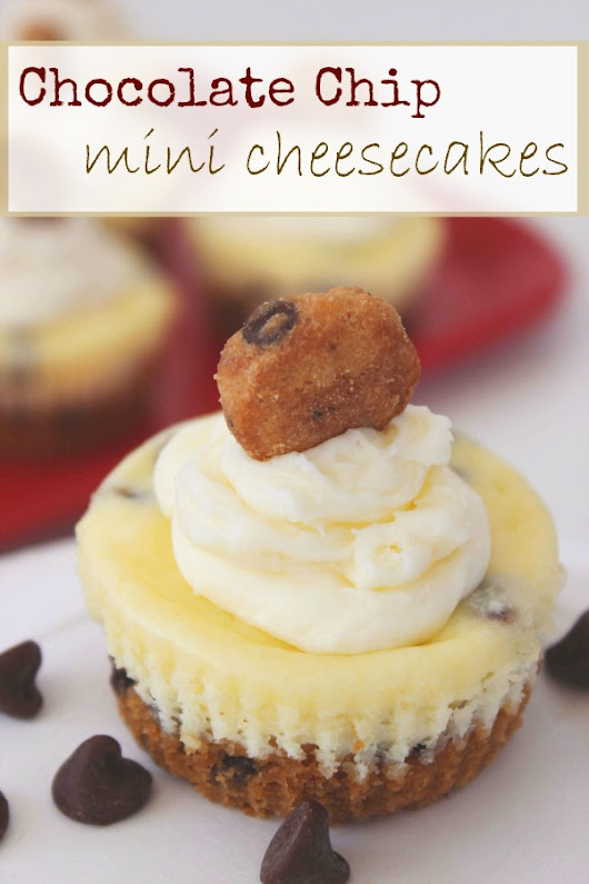 Chocolate Chip Cookie Mini Cheesecakes