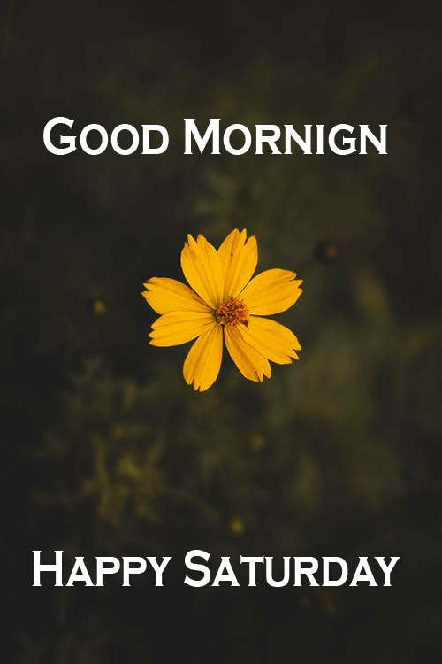 Saturday Good Morning Images 2