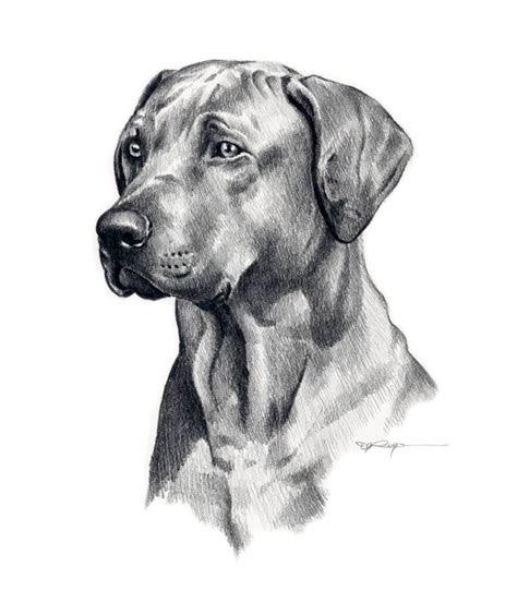 dog drawing cool dog art pinterest dog drawings