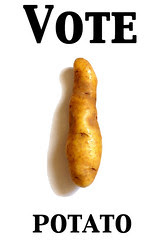 votepotato2.jpg