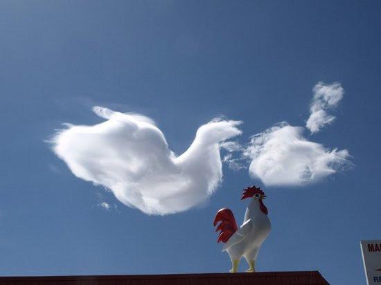 Σύννεφα που μοιάζουν με πράγματα (5)