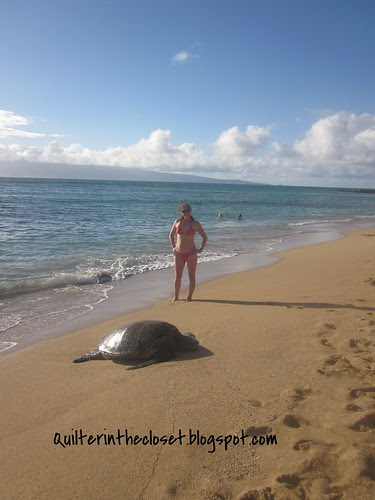 Me with a resting sea turtle