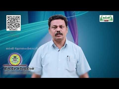 11th Computer science பாய்வுக்கட்டுப்பாடு  பாடம் 10 பகுதி 1  Kalvi TV