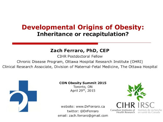 Developmental Origins of Obesity: The Role of Epigenetics