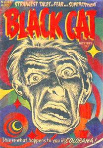 Black Cat #45