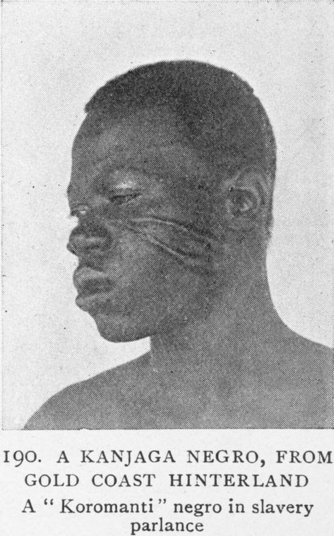 "A Kanjaga Negro, From Gold Coast Hinterland; A ""Koromanti"" Negro in slavery parlance."