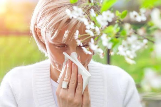 Probiotic could help alleviate hay fever symptoms | life coach