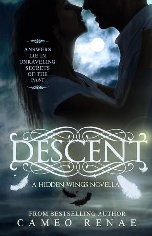 Descent (Hidden Wings, #1.5)