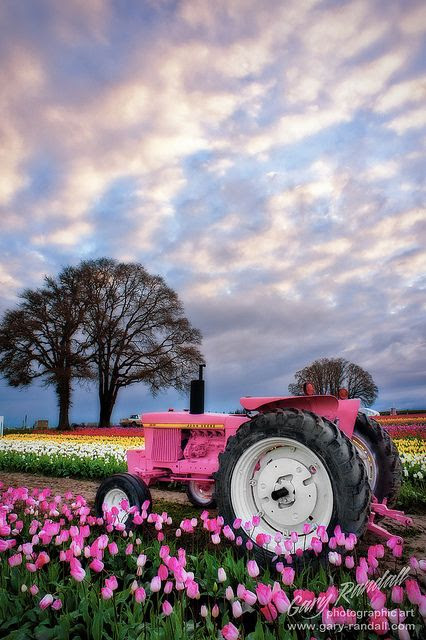 John Deere Pink   Ready,  Set,  Bloom!!!! Bebe'!!! Love the pink tractor!!!
