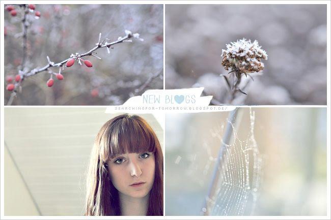 http://i402.photobucket.com/albums/pp103/Sushiina/newblogs/blog_iron_zps82d7c2e5.jpg