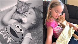 One Extraordinary Cat Has Taken The Internet By Storm! Bailey And His Love For His Human Sisters