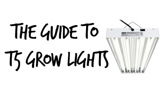 T5 Grow Lights Guide for 2016 | Epic Gardening