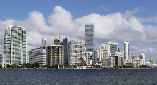 Miami Among Cities at Risk From Yellow Fever Spread