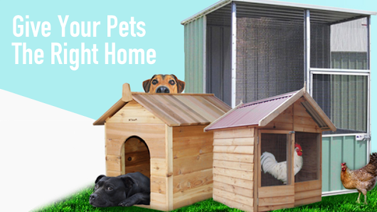 Why Aviaries and Pet Enclosures are Good Pet Homes