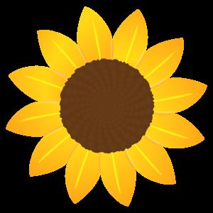 ひまわりの花1 花植物イラスト Flode Illustration フロデイラスト