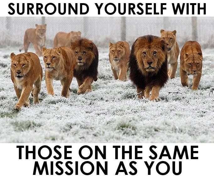 Episode 22 You Are Who You Surround Yourself With Live To Grind