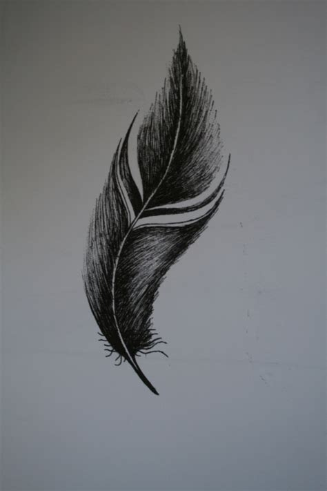 fine liner feather realistic artist