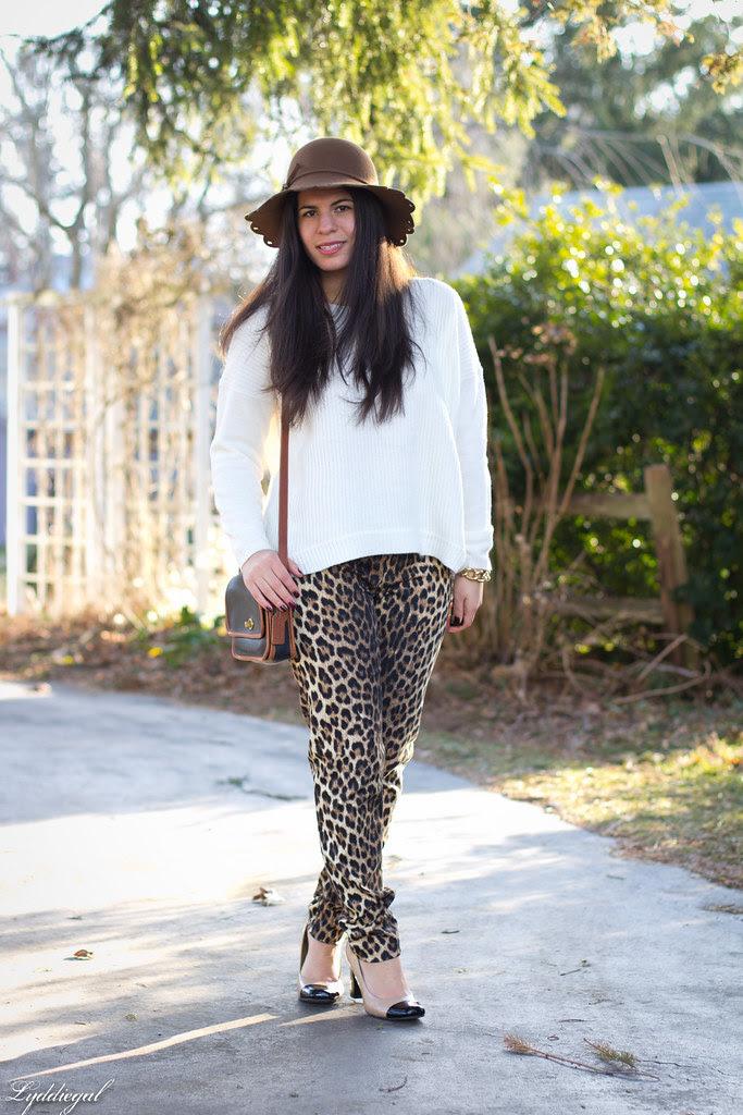 skinny leopard-1.jpg