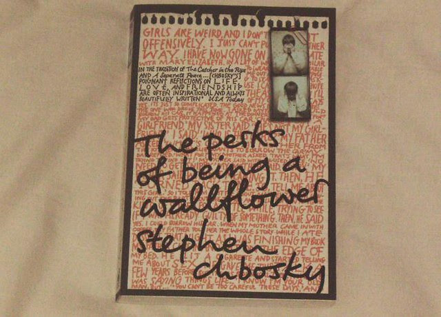 Perks book cover