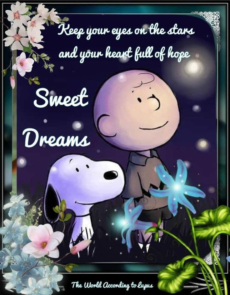 Snoopy Sweet Dreams Goodnight Quote Pictures Photos And Images For