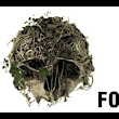 The Forest  - YouTube