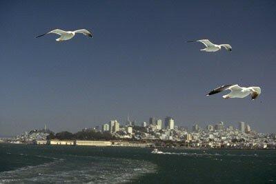 San_Francisco_0035___Mowen
