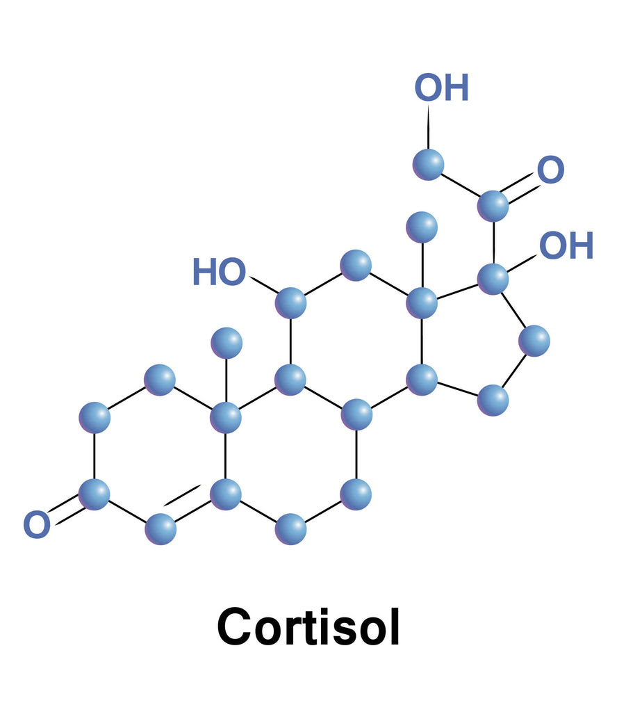 Cortisol: Good or Bad? How to Maintain a Healthy Balance ...