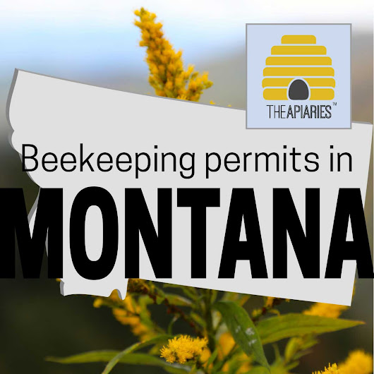 Apiary Leases In Montana