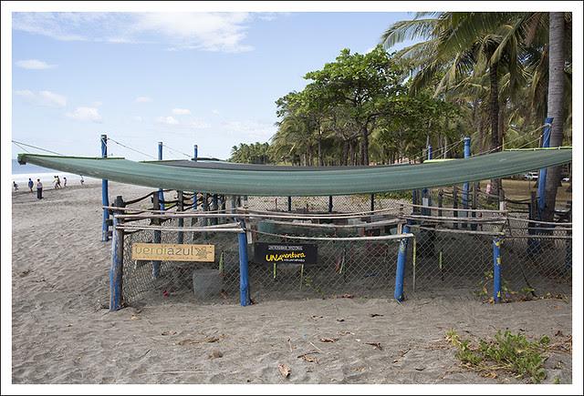 Playa Junquillal 3