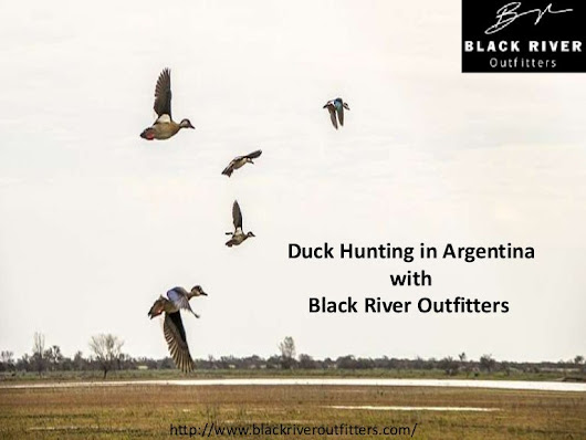 Duck Hunting Argentina - Black River Outfitters