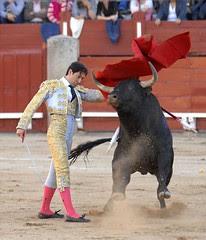 Vicente Barrera triunfa en Toledo