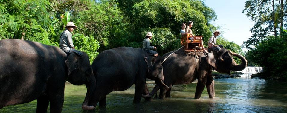 Bali Zoo Park Tour | Bali Tour Operators