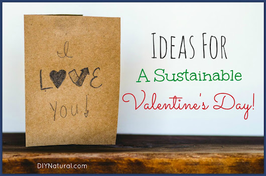 DIY Valentines Day Ideas to Help Keep it Sustainable and Fun!
