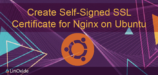 How to Create Self-Signed SSL Certificate for Nginx on Ubuntu 18.04