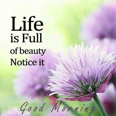 Life Is Full Of Beauty Good Morning Inspirational Quotes Good