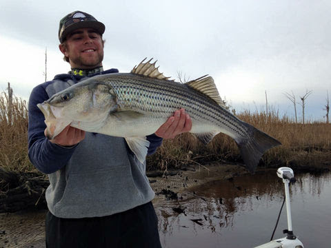 "Ambassador Post: ""Sweater Weather"" from Capt. Wolfe                           