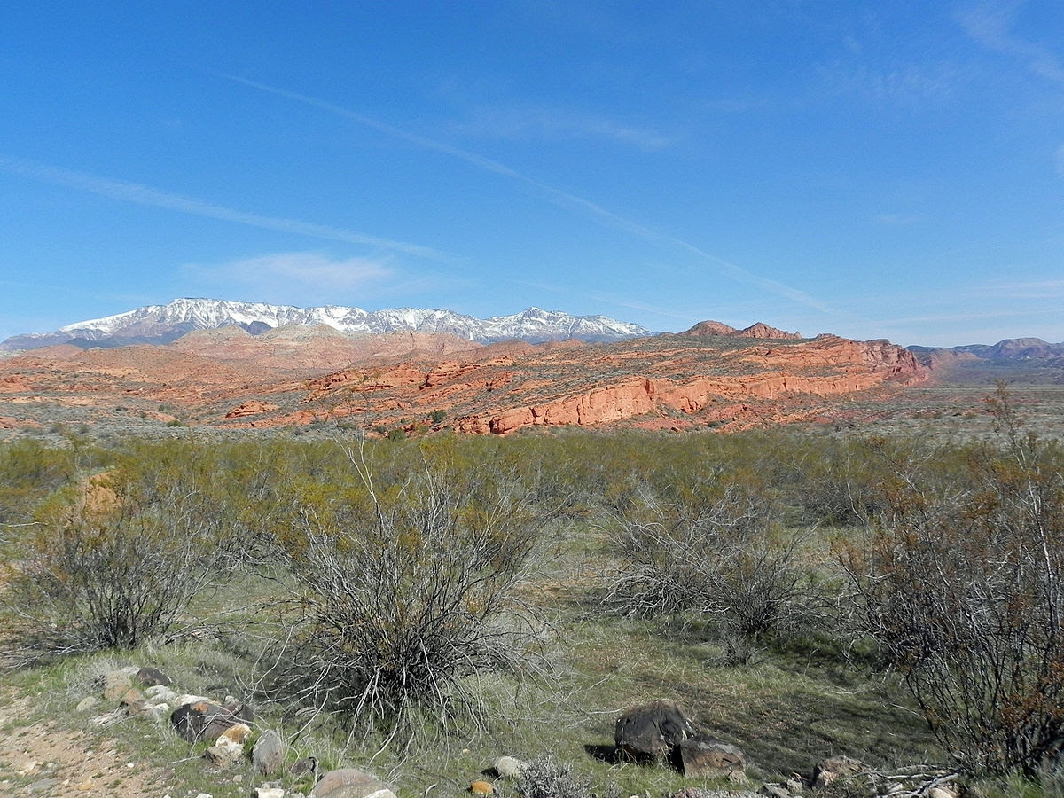 Red Cliffs National Conservation Area Wikipedia