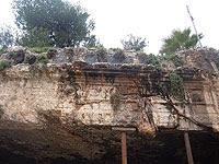 """Иск против Лувра: вернуть Израилю древности, похищенные в """"Гробницах царей"""""""