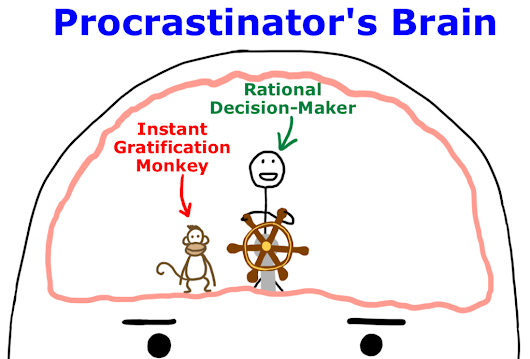Why Procrastinators Procrastinate | Wait But WhyWait But Why