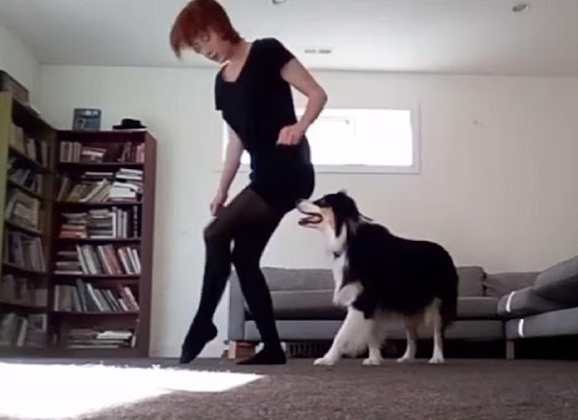 This dog learned to Irish dance, and her skills are seriously mindblowing