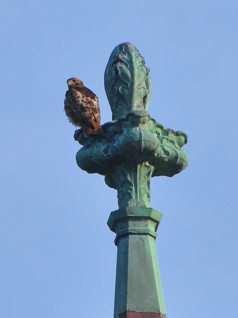 Isolde on a Finial