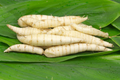 Arrowroot - 7 Health Benefits You Probably Didn't Know About! - Your ultimate health coach