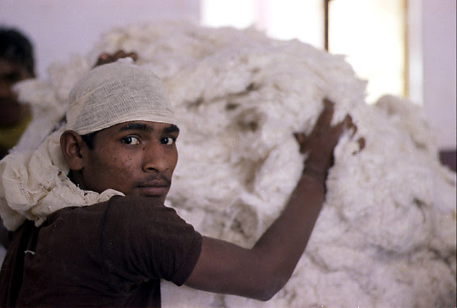 Cotton worker, India