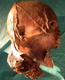 Cabeza momificada de Enrique IV. | CSIC