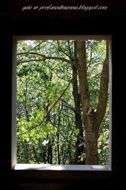 Da una finestra
