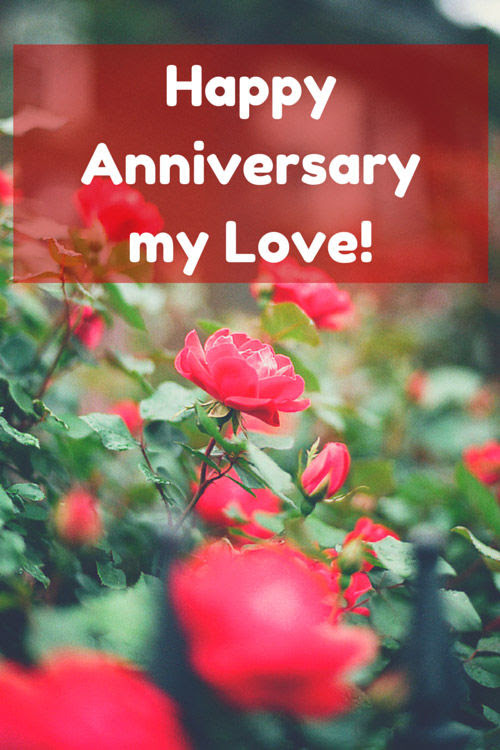 Happy Anniversary My Love Pictures Photos And Images For Facebook