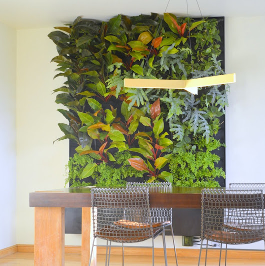 Phils and Ferns Vertical Garden