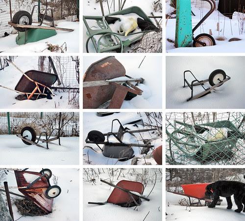 wheelbarrows in the snow