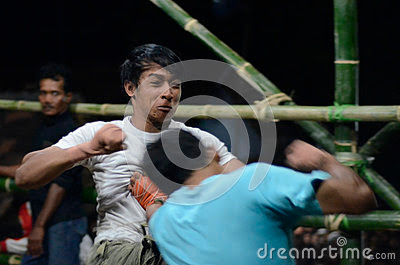 Royalty Free Stock Photography: INDONESIAN FREE FIGHT